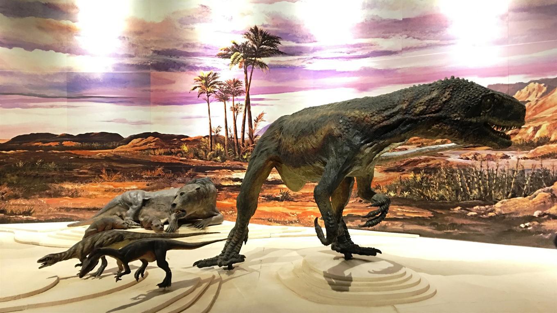 dinosarios san juan
