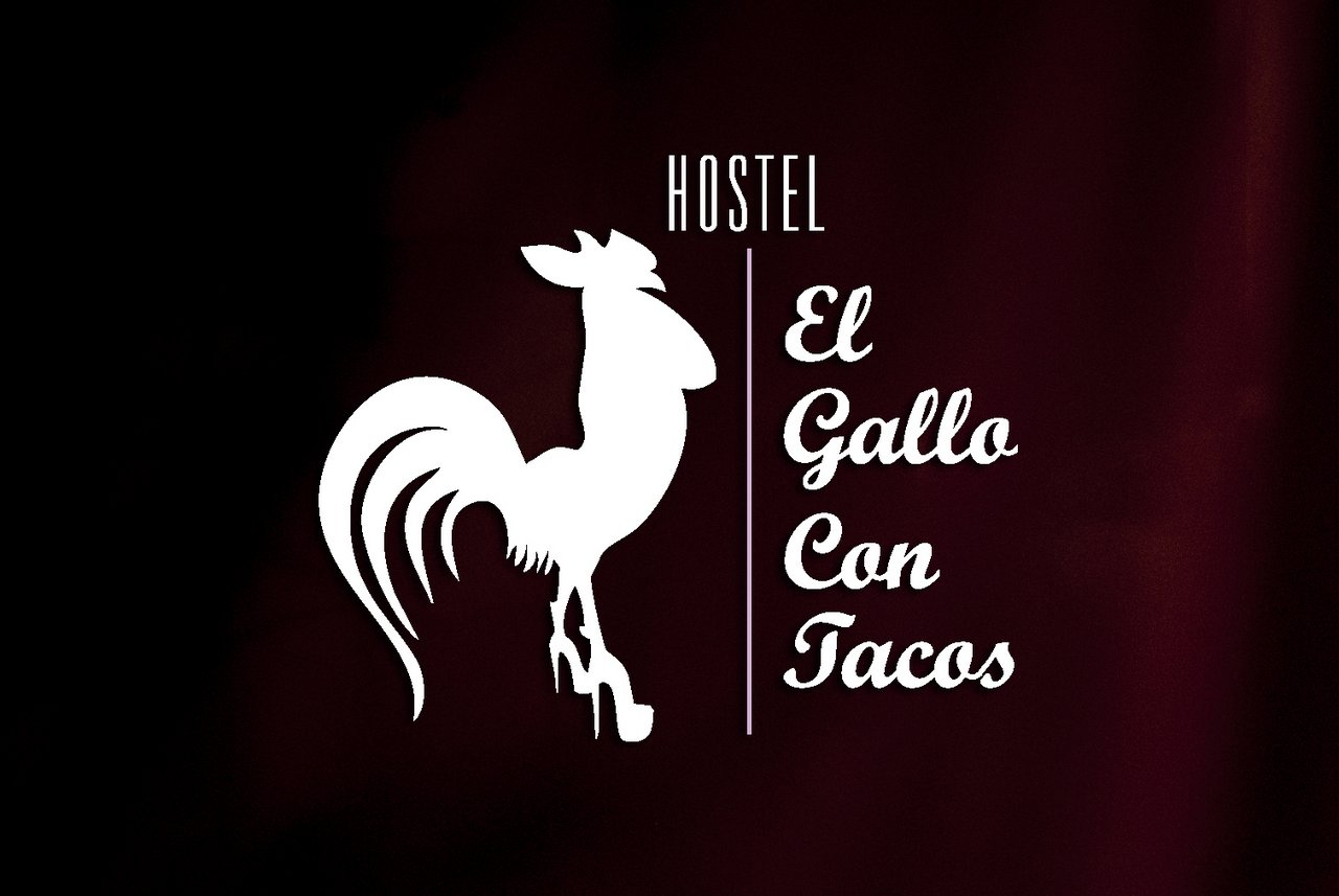 el-gallo-con-tacos